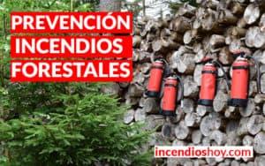 incendio hoy prevencion incendios forestales