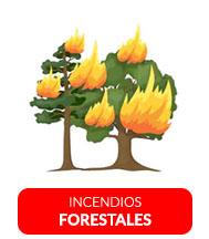 Incendio hoy. Noticias de Incendios hoy 24