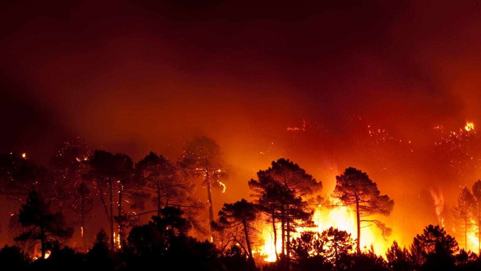 Incendio hoy. Noticias de Incendios hoy 34